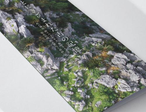 やんばる国立公園 大石林山 パンフレットデザイン:株式会社 南都