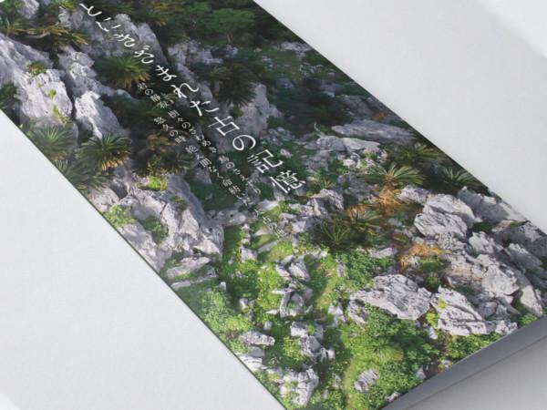 やんばる国立公園 大石林山 パンフレットデザイン